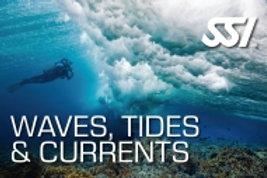 Wellen, Gezeiten und Strömungen