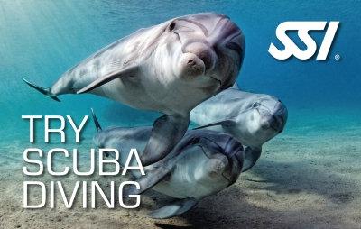 Schnuppertauchen (Try Scuba Diving)