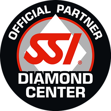 SSI_LOGO_Diamond_Center.png