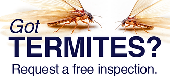 Request Termite Inspection