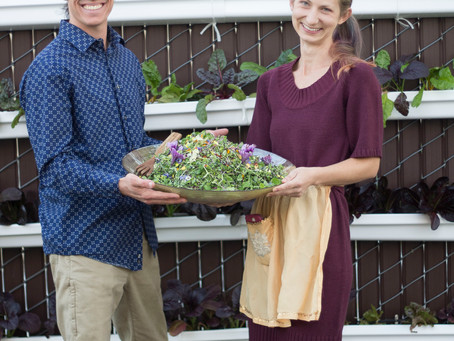 Meet the Farmers: Little Sprouts Micro-Farm