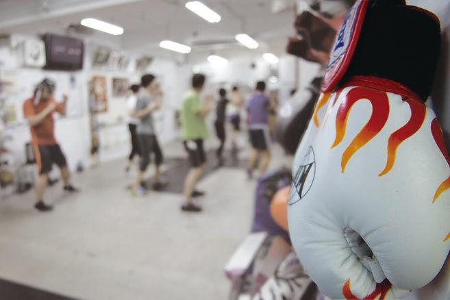 ボクシンググローブcmyk.jpg
