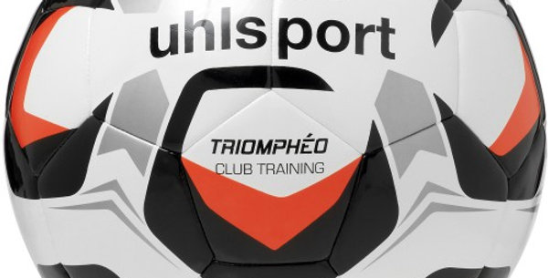 Ballon LIGUE 2 CLUB TRAINING T.5