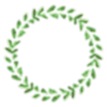 植物のリース5