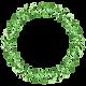Plant Wreath 5