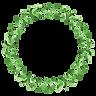 Grinalda planta 5