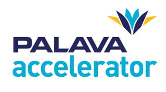 Palava Accelerator.png