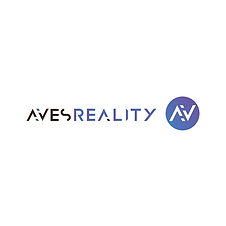AVES Reality