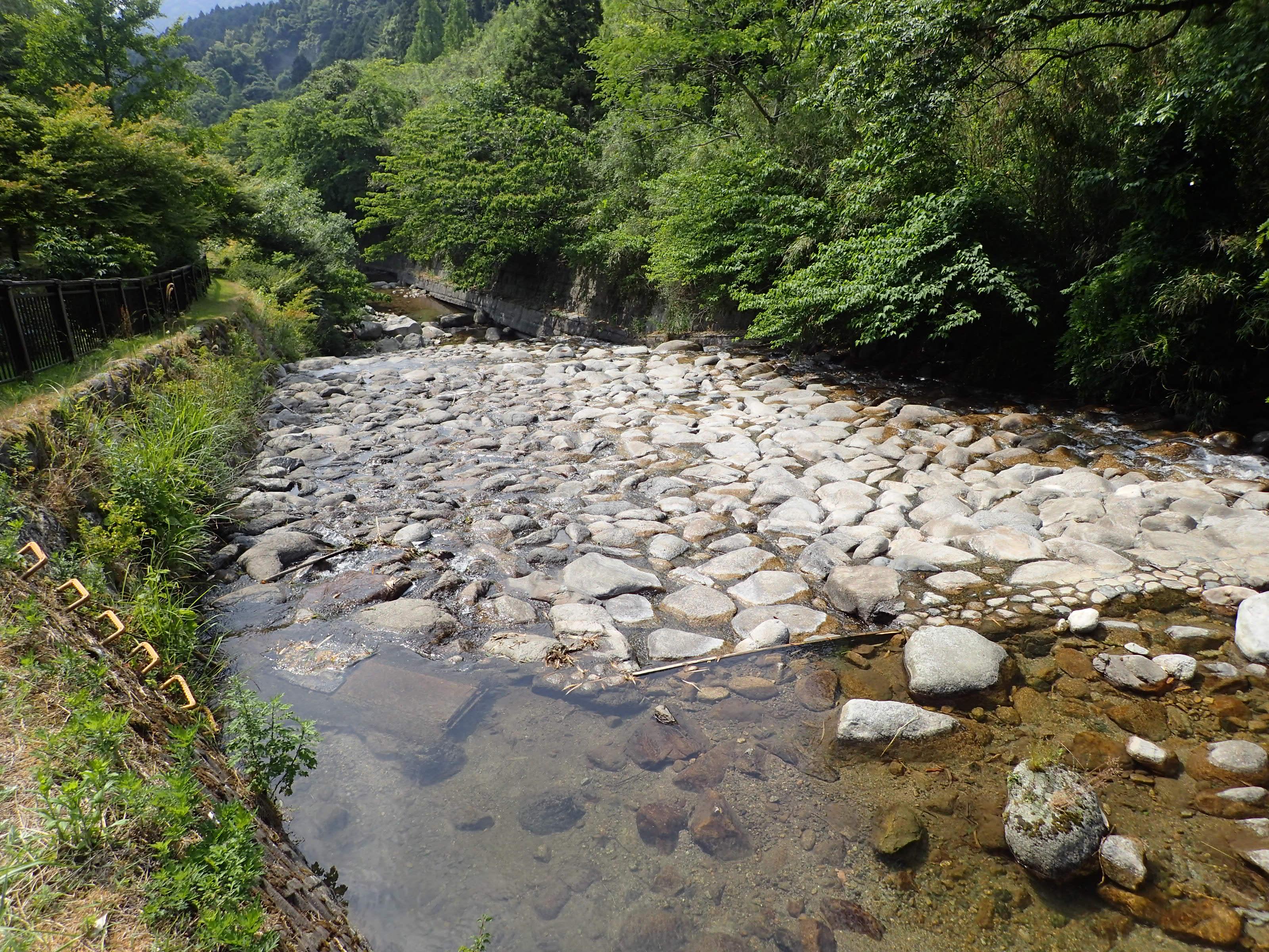 筑紫野市香園地区を流れる宝満川