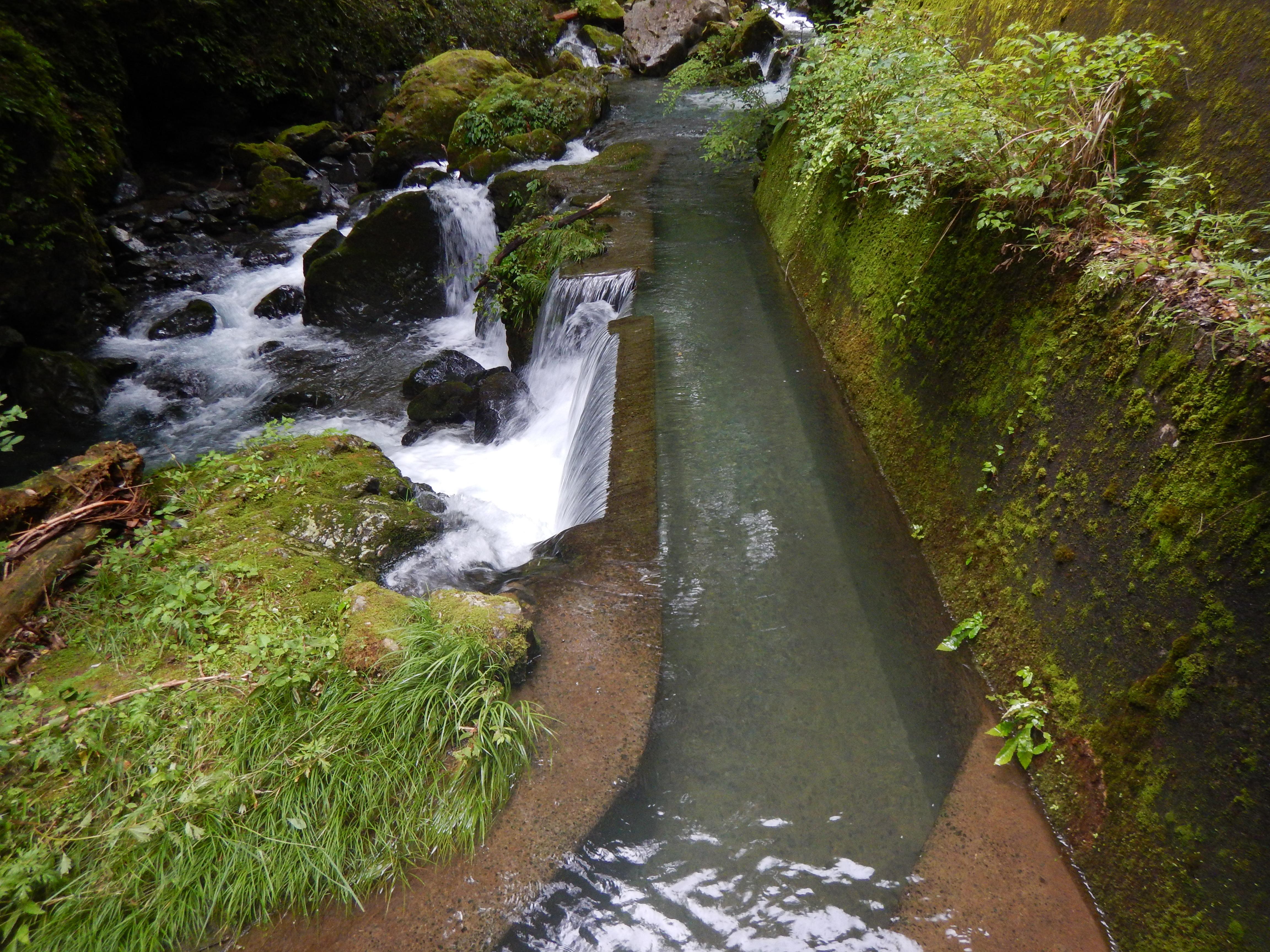 大正期に作られた大人用水路取水口
