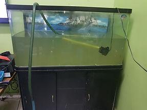 Aquarium Restoration before