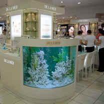 Customized Aquarium and Maintenance