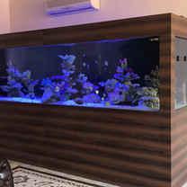 Customized 4 meters Glass Aquarium