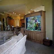 2 Way View Custom Aquarium