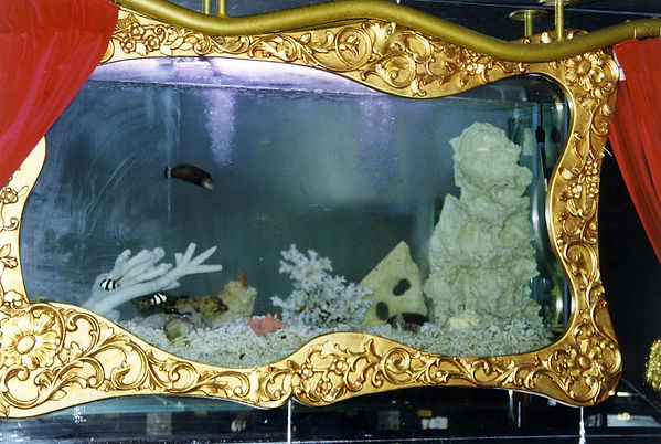 Customized Aquarium