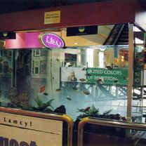 Customized Aquarium