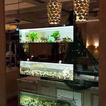 3 custom aquariums