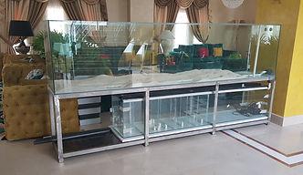Customized Aquarium.jpg