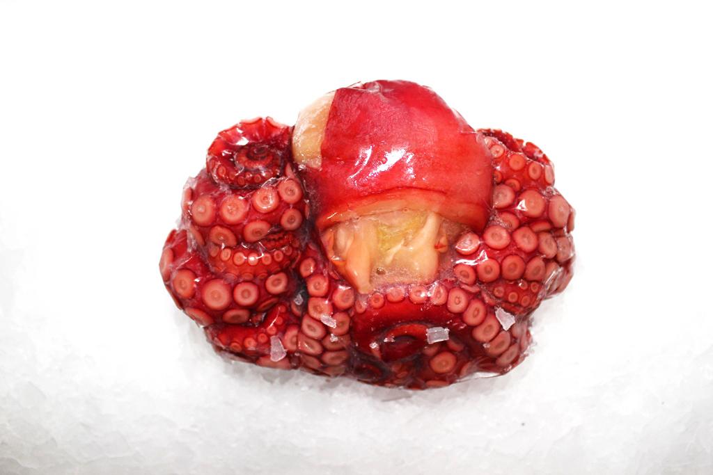 Tako Octopus (Cooked)