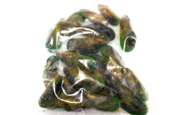 Full shell Mussels