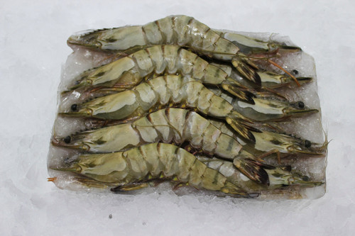 Frozen Tiger Shrimps {Head/on} (1 kg)