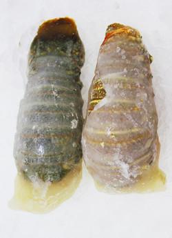 Omani Lobster Tail