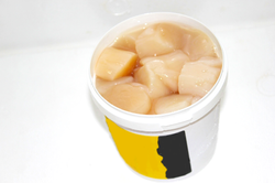 Canadian Scallop Meat - container