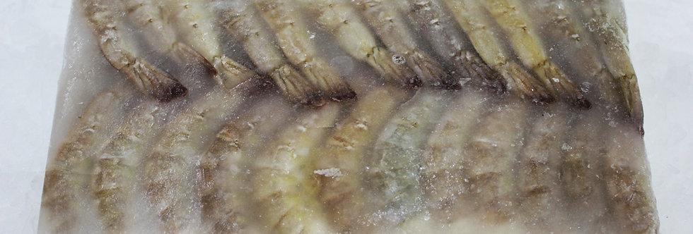 FROZEN TIGER SHRIMP Head/LESS - block 2 KG
