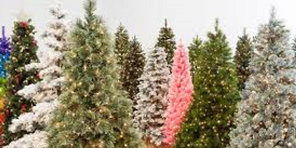 Festival of Trees Opening - Friday, November 29