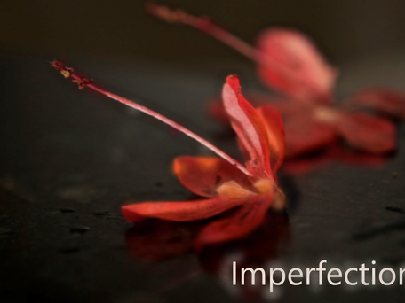 How to deal with Imperfection: the catholic way