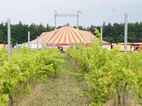 Cirkus Arene flytter ind