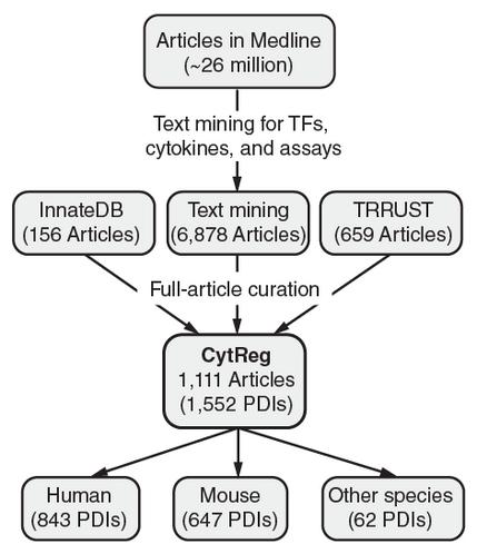 Global landscape of mouse and human cytokine transcriptional regulation