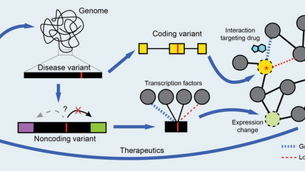 Review article published in Current Opinion in Systems Biology