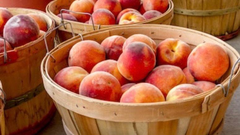 PREORDER** Bushel Peaches