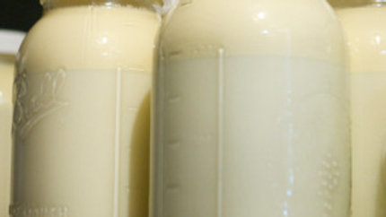 Raw Cow's Milk - Gallons