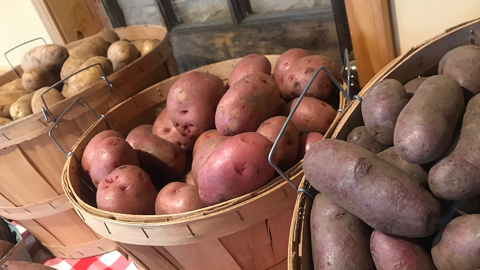 2# Potatoes - Red, Russet or Fingerling