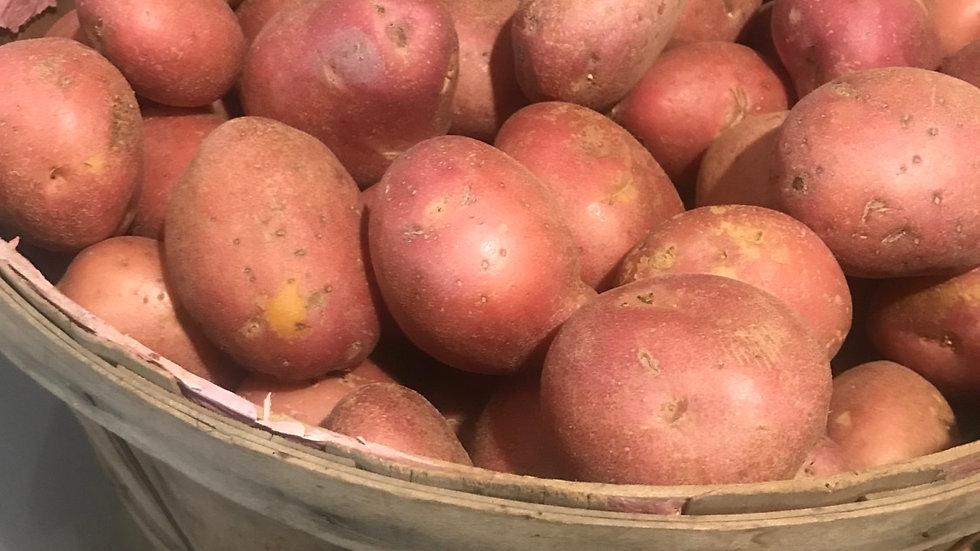 Potatoes per lb