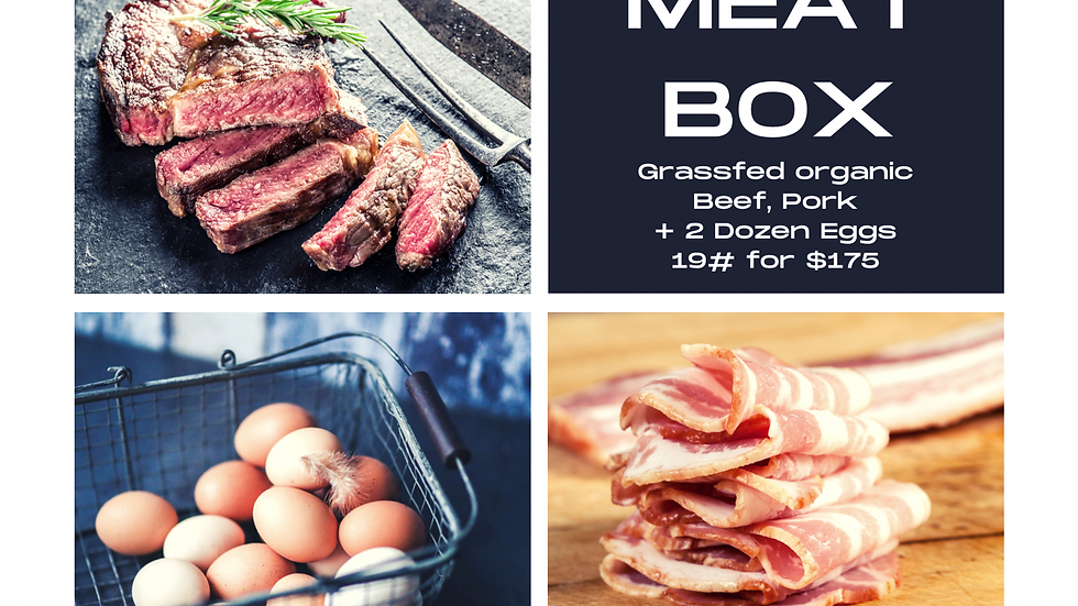 Meat Box