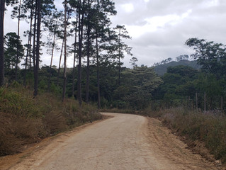 El Fondo Cafetero realiza obras de mantenimiento en el municipio de  Lajas Comayagua.