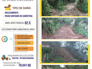 Fondo Cafetero Nacional realizar obras de rehabilitación de red vial cafetalera en San Pedro Sula