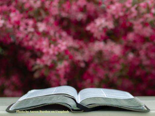Sunday Scripture Reflection: Mark 16:1-8