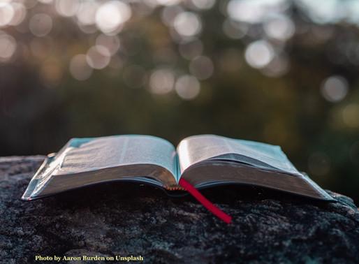 Sunday Scripture Reflection: Matthew 18:21-35