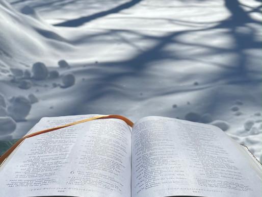 Sunday Scripture Reflection: Mark 1:9-15