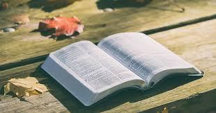 Sunday Scripture Reflection: Matthew 22:34-46