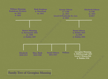 Georgina Manning : the woman who threw paint over John Redmond