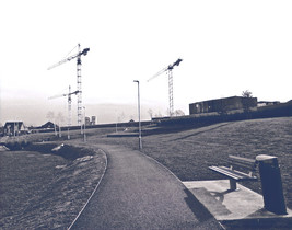 Historyeye | Racefield, Monkstown today