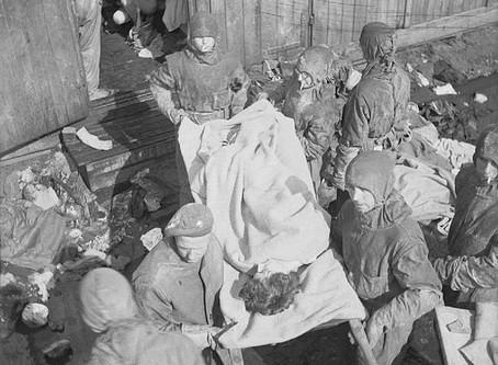 Patrick J.Fox : an Irish doctor at Bergen-Belsen