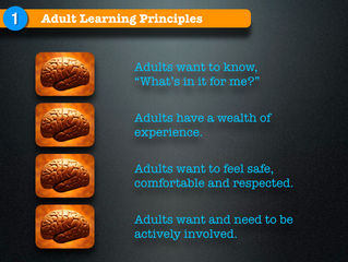 Knowing These 4 Adult Learning Principles Will Make You More Effective
