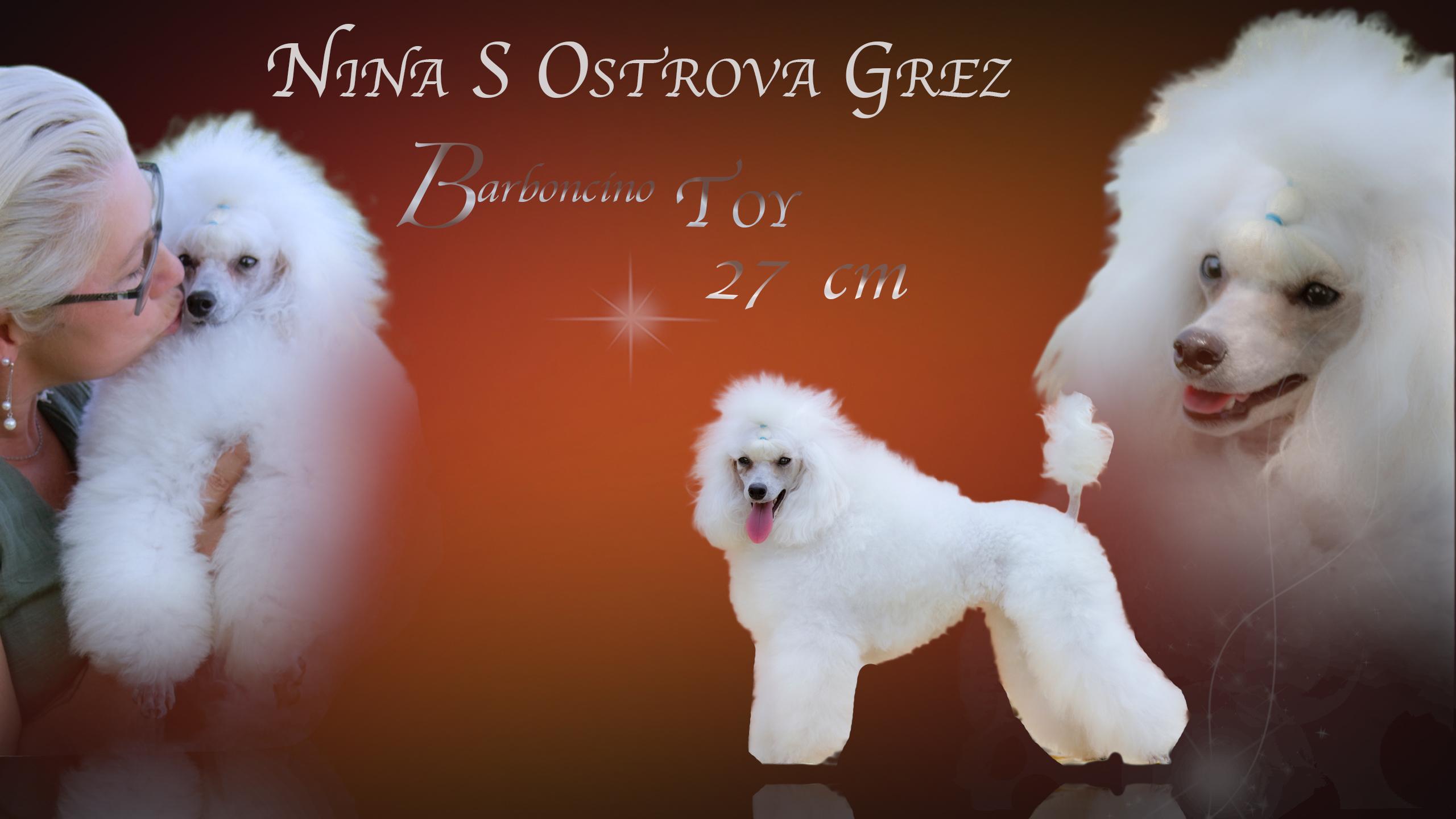 Nina sOstrova Grez TOY 26 CM ***ENTRA***