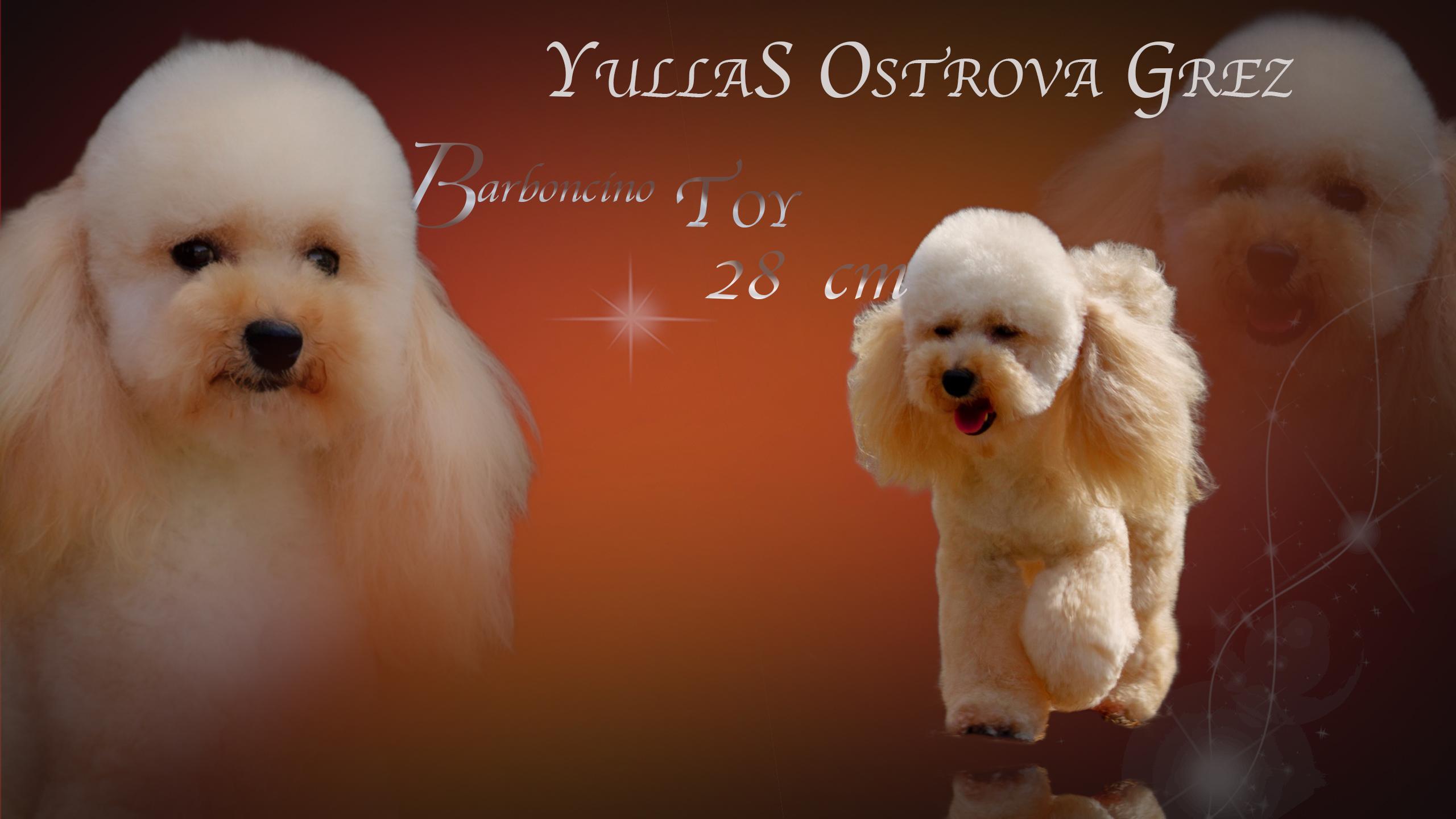 Fiona Yulla s Ostrova Grez TOY  28 CM ***ENTRA***